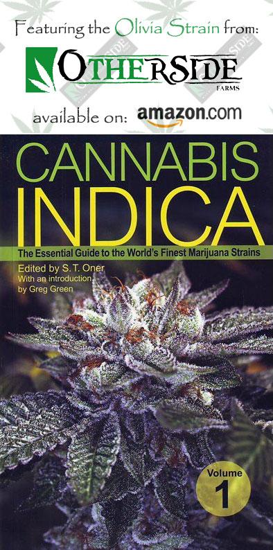 book1 Olivia Kush #marijuana #cannabis