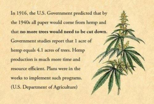 Kai Degner falsely says Declaration of Independence was penned on hemp