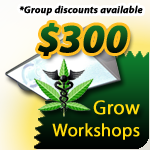 Grow Workshops