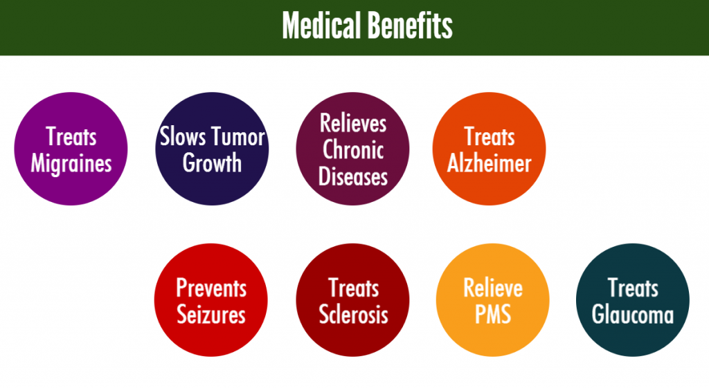 Medical Benefits Prevents Seizures Relieves Chronic Diseases Treats Sclerosis Treats Alzheimer Relieve PMS