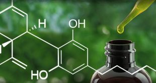 heres-everything-you-need-to-know-about-cbd[1]