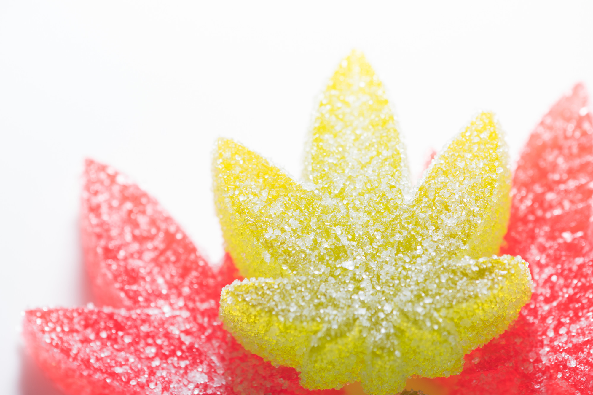 Your Ultimate Guide to Weed Gummies - Your Ultimate Guide to Weed Gummies