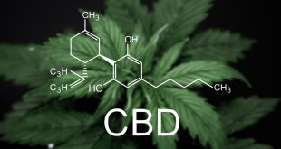 is_190703_cannabidiol_marijuana_800x450[1]