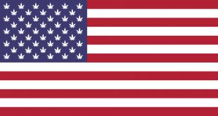 american-flag-5734426_960_720[1]