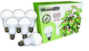 Miracle LED Almost Free Energy 100W Spectrum Grow Lite – Daylight White Full Spectrum LED Indoor Plant Growing Light Bulb for DIY Horticulture, Hydroponics, and Indoor Gardens (604317) 6Pack