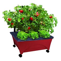 Emsco Group 2350 Bountiful Harvest Raised Bed Improved Aeration – Mobile Unit with Casters Self Watering Grow Box, Terracotta