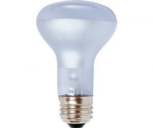 Agrosun/Dayspot BURP413 Incandescent Growlight Plant Bulb, 60 Watt