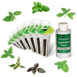 AeroGarden International Basil Seed Kit (7 pod)